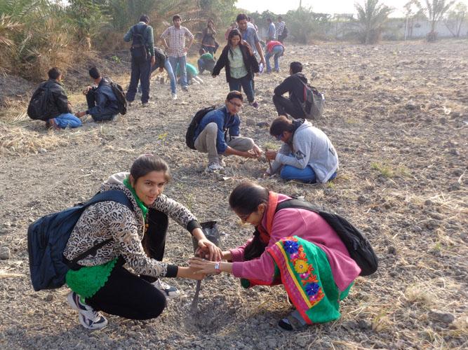 D2d Eco friendly College
