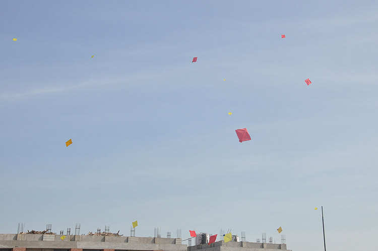 Kites Day in Amiraj Engineering Ahmedabad